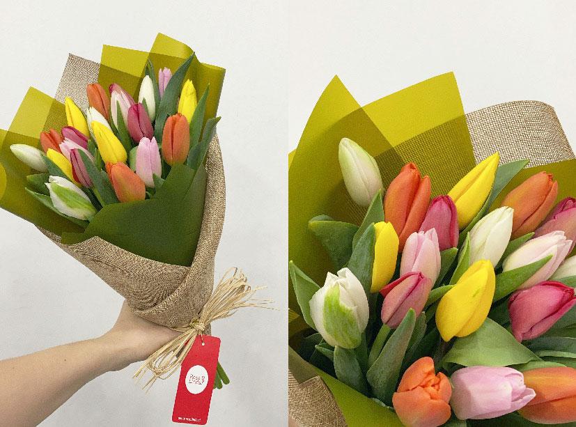 6 datos curiosos de los tulipanes que te sorprenderá conocer