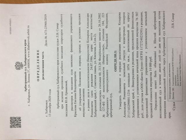 Лот №101029 100% доля участия в ООО «Битко Групп» (ОГРН 1172724023295) - торги по банкротству