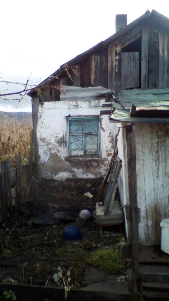 Торги №97805 Лот №181136 доли в общей долевой собственности на земельный - торги по банкротству 2