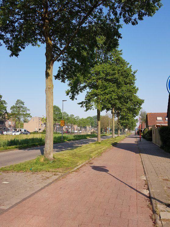 Aloëbruin 56, Zoetermeer foto-53