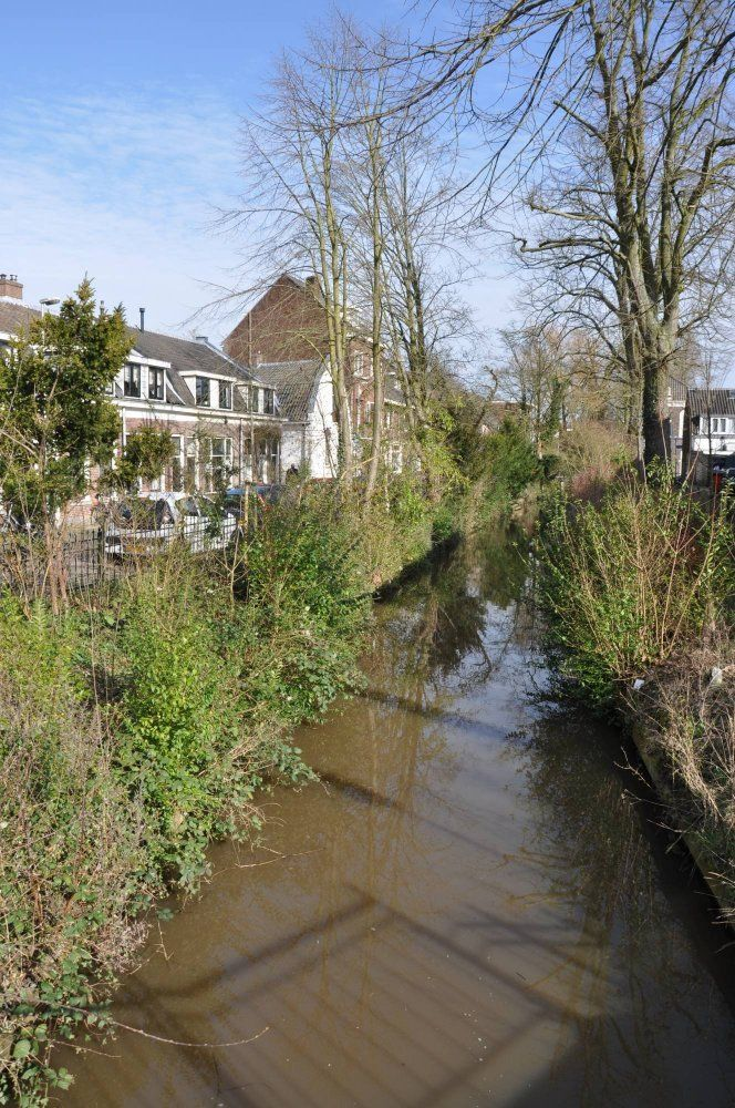 Zonstraat, Utrecht foto-19
