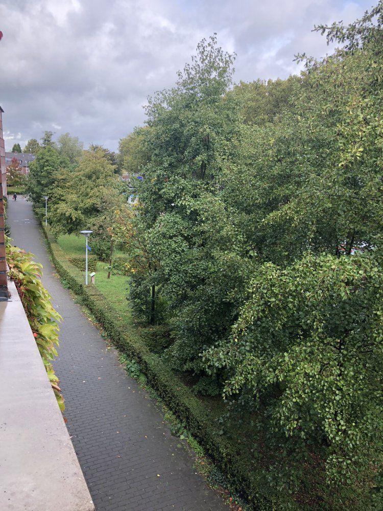 Molukkenstraat, Utrecht foto-14