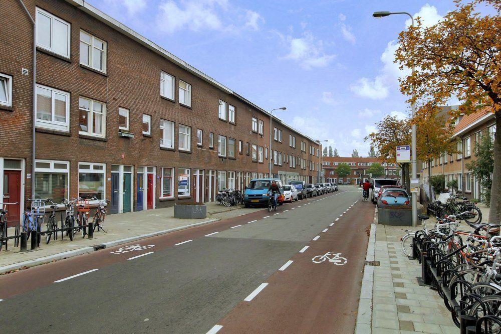 Laan van Nieuw-Guinea, Utrecht foto-24