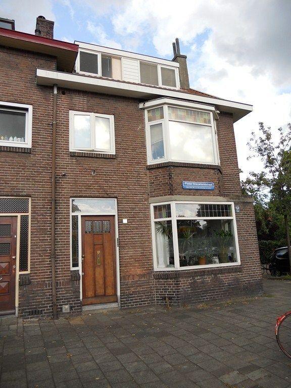 Pieter Nieuwlandstraat, Utrecht foto-0