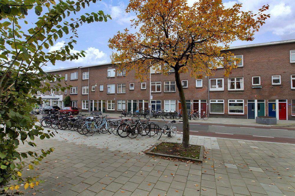 Laan van Nieuw-Guinea, Utrecht foto-1