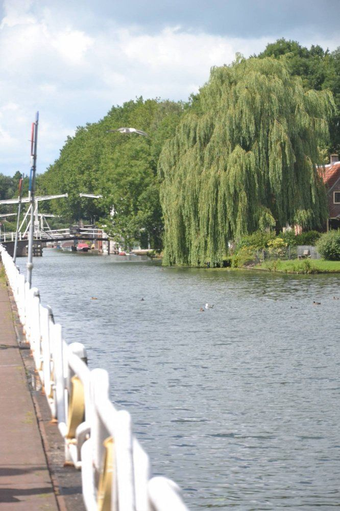 Leidseweg, Utrecht foto-12