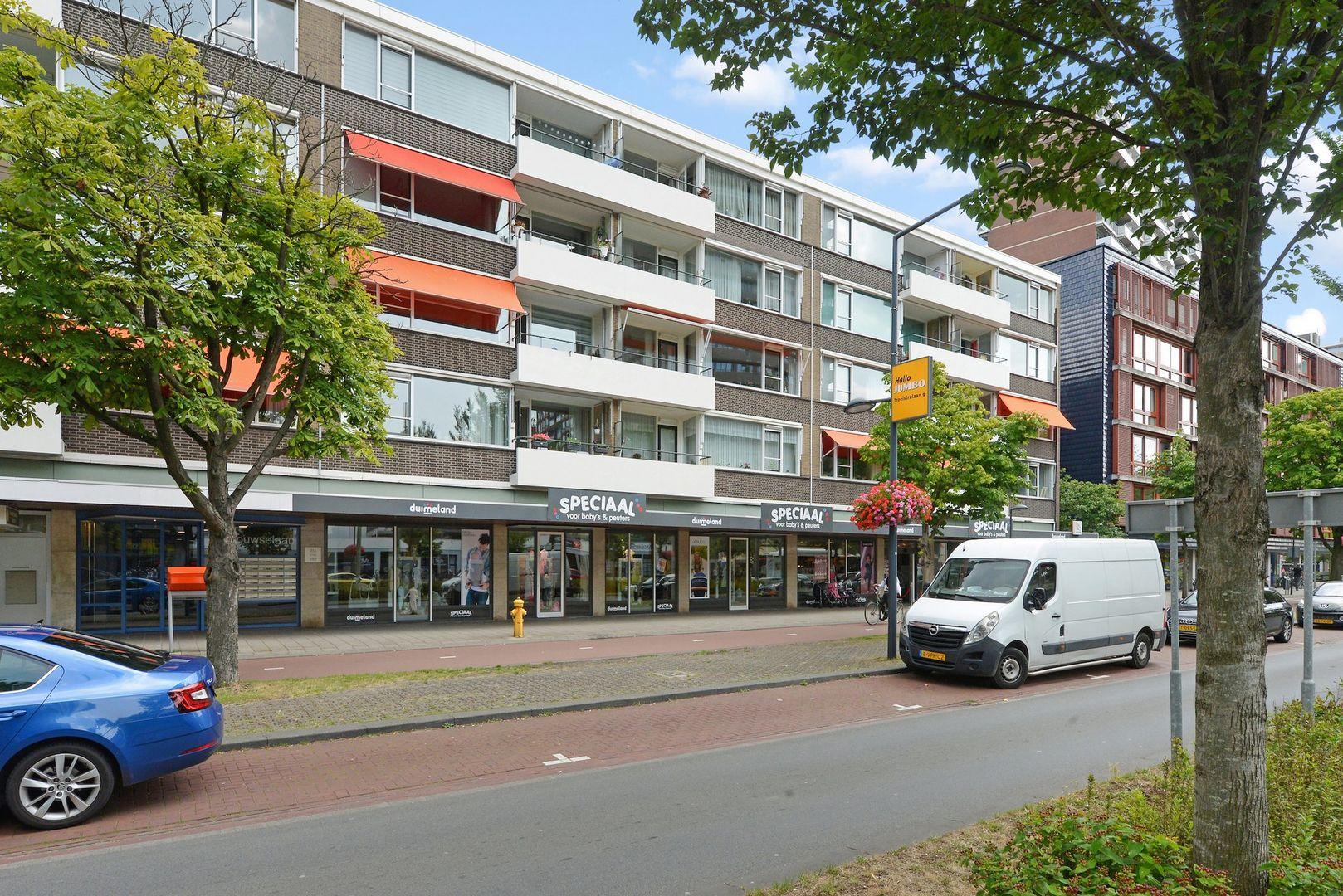 Papsouwselaan 235, Delft foto-0