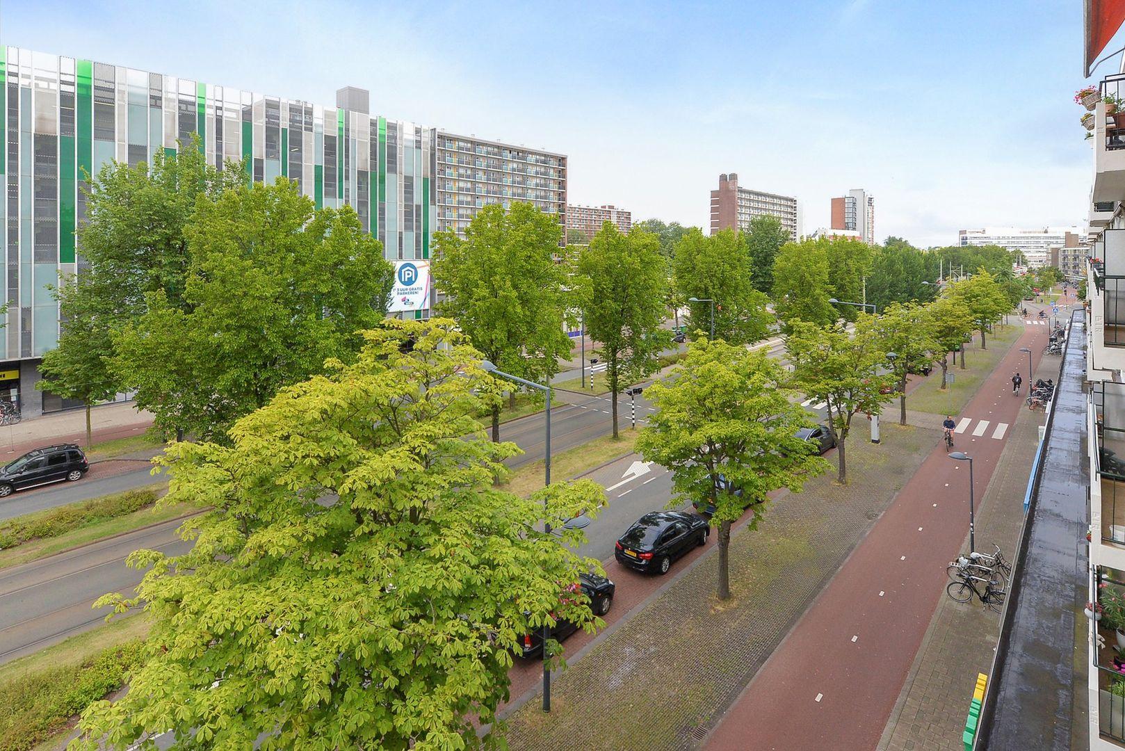 Papsouwselaan 255, Delft foto-35