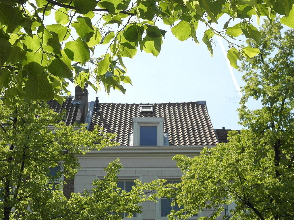 Oude Delft 101 III, Delft foto-1