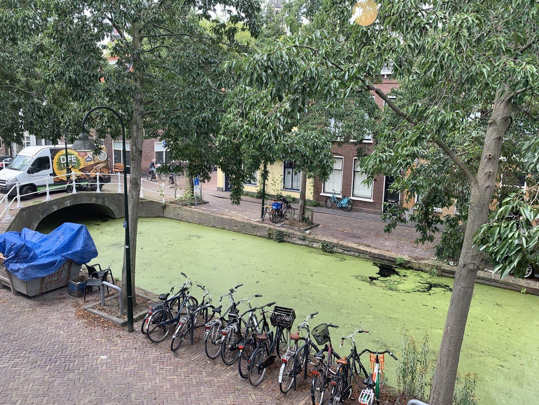 Molslaan 121 A, Delft foto-10