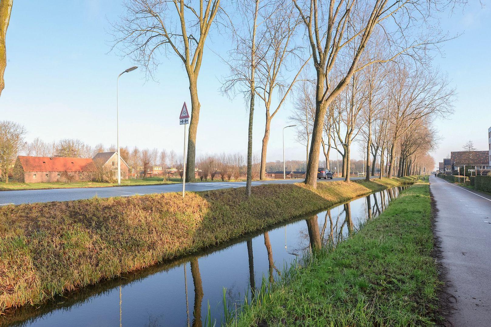 Cypergras 191, Den Haag foto-10