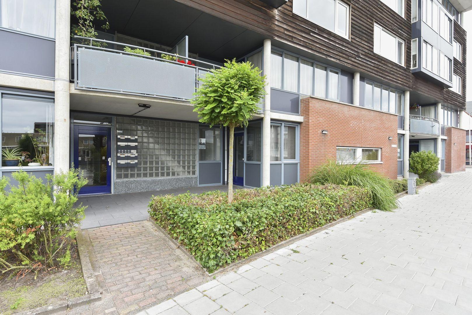 Zuideinde 214, Delft foto-1