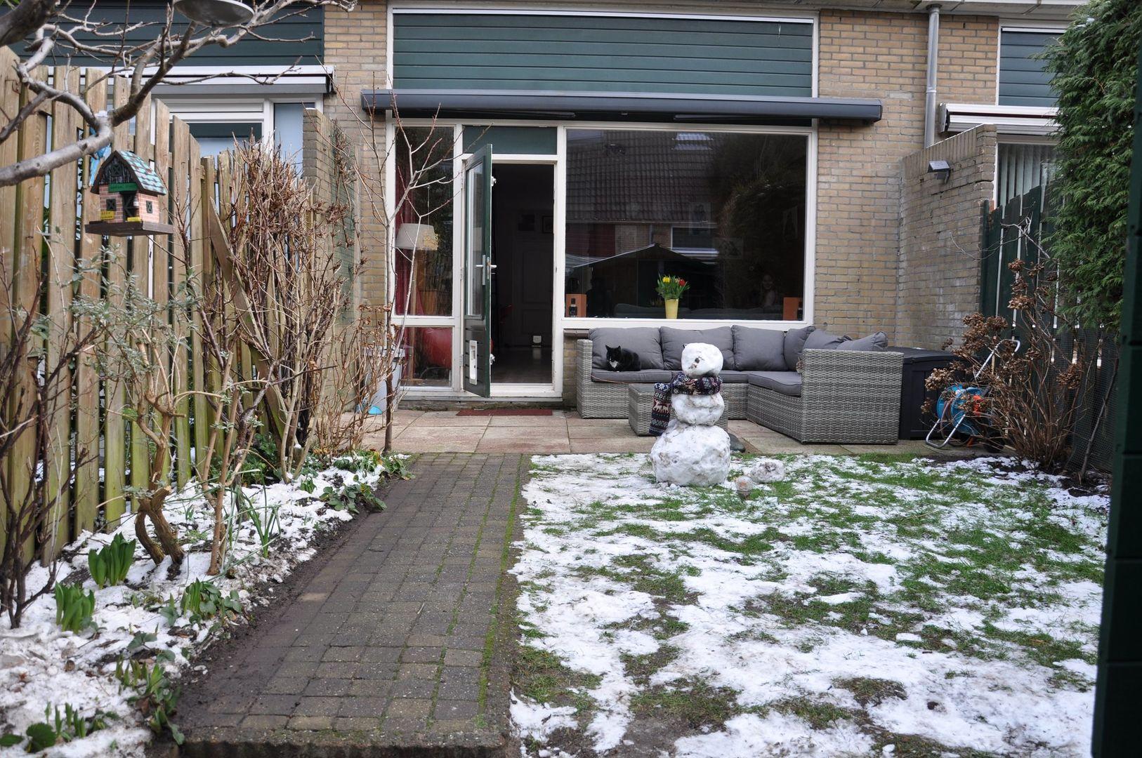 Laseurpad 27, Schiedam foto-13