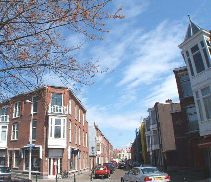Valkenboslaan, The Hague