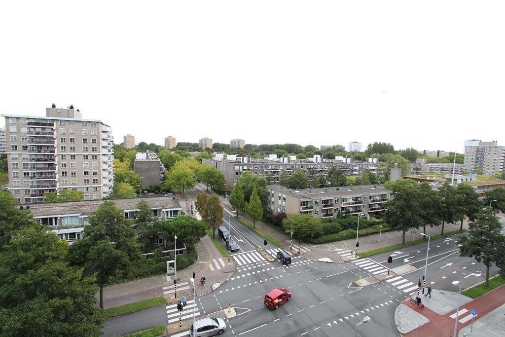 Van Leijenberghlaan