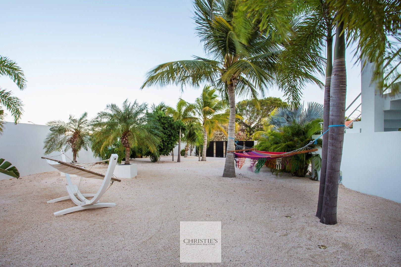 Brakkeput Abou 298, Curacao foto-21