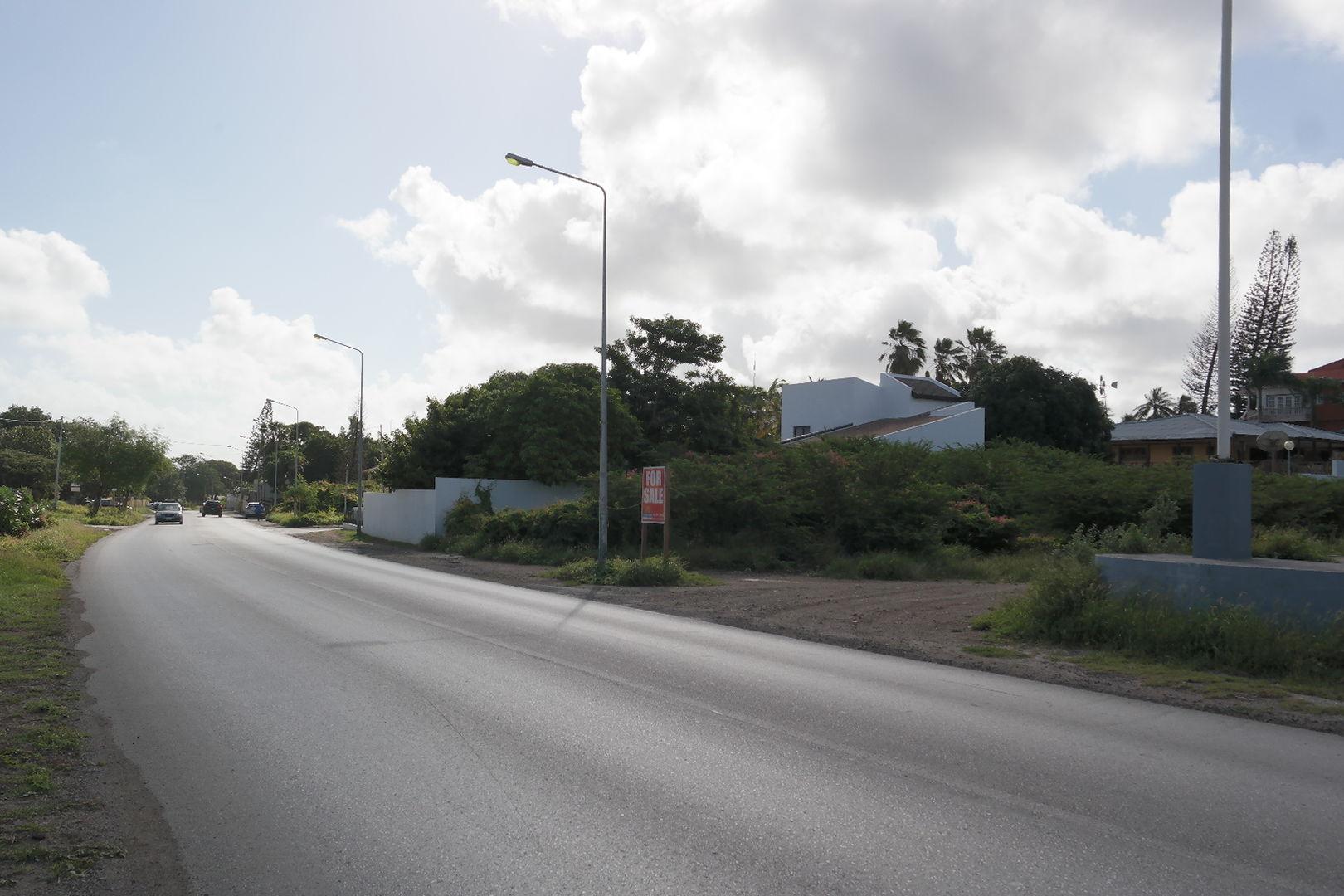 Cas Coraweg, Willemstad foto-2
