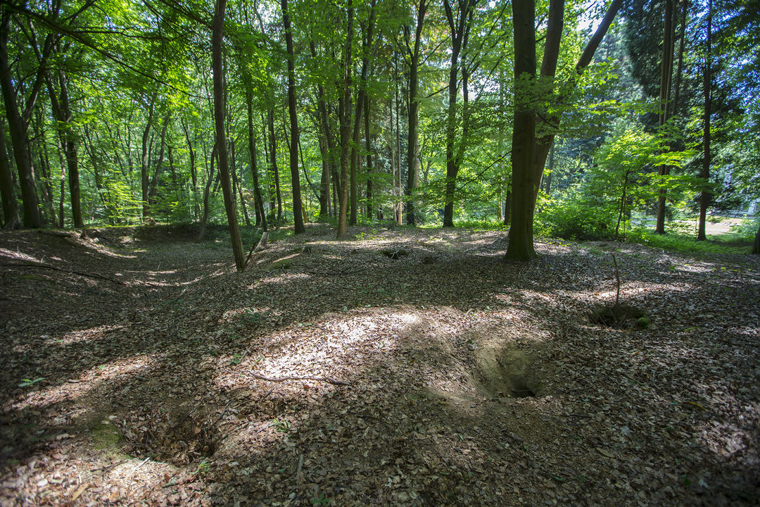 Additional photo for property listing at Snippendaalseweg 1 en 3 Snippendaalseweg 1 en 3 Rheden, Gelderland,6991JK Нидерланды