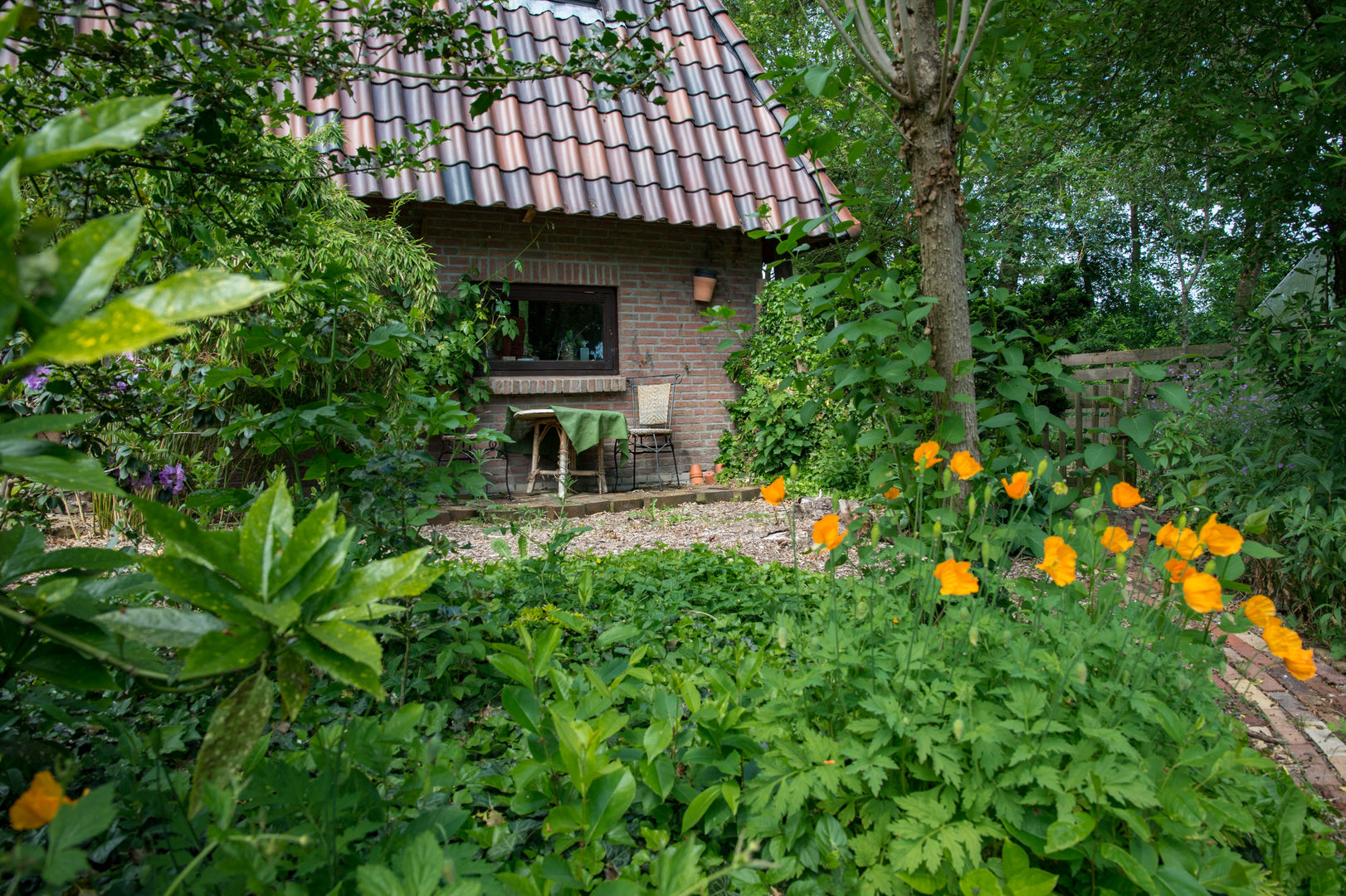 Rosengaardeweg 22, Dalfsen foto-