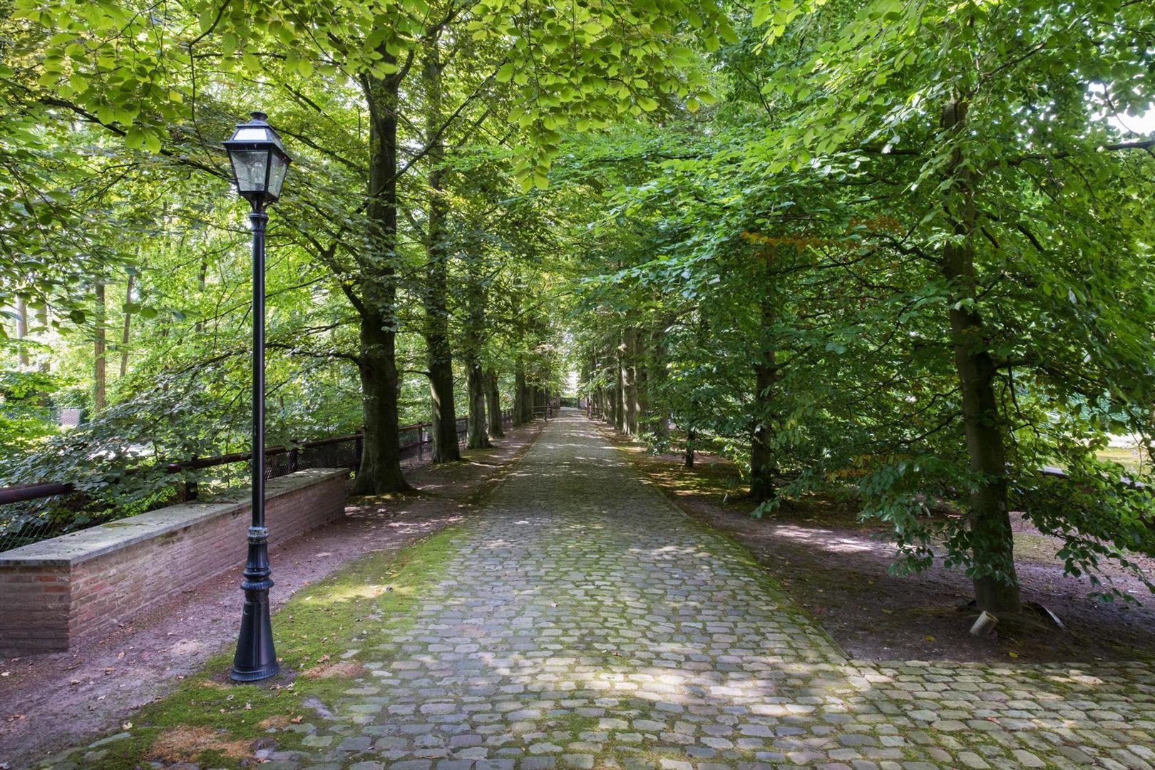 Lintbekelaan 19, Turnhout foto-
