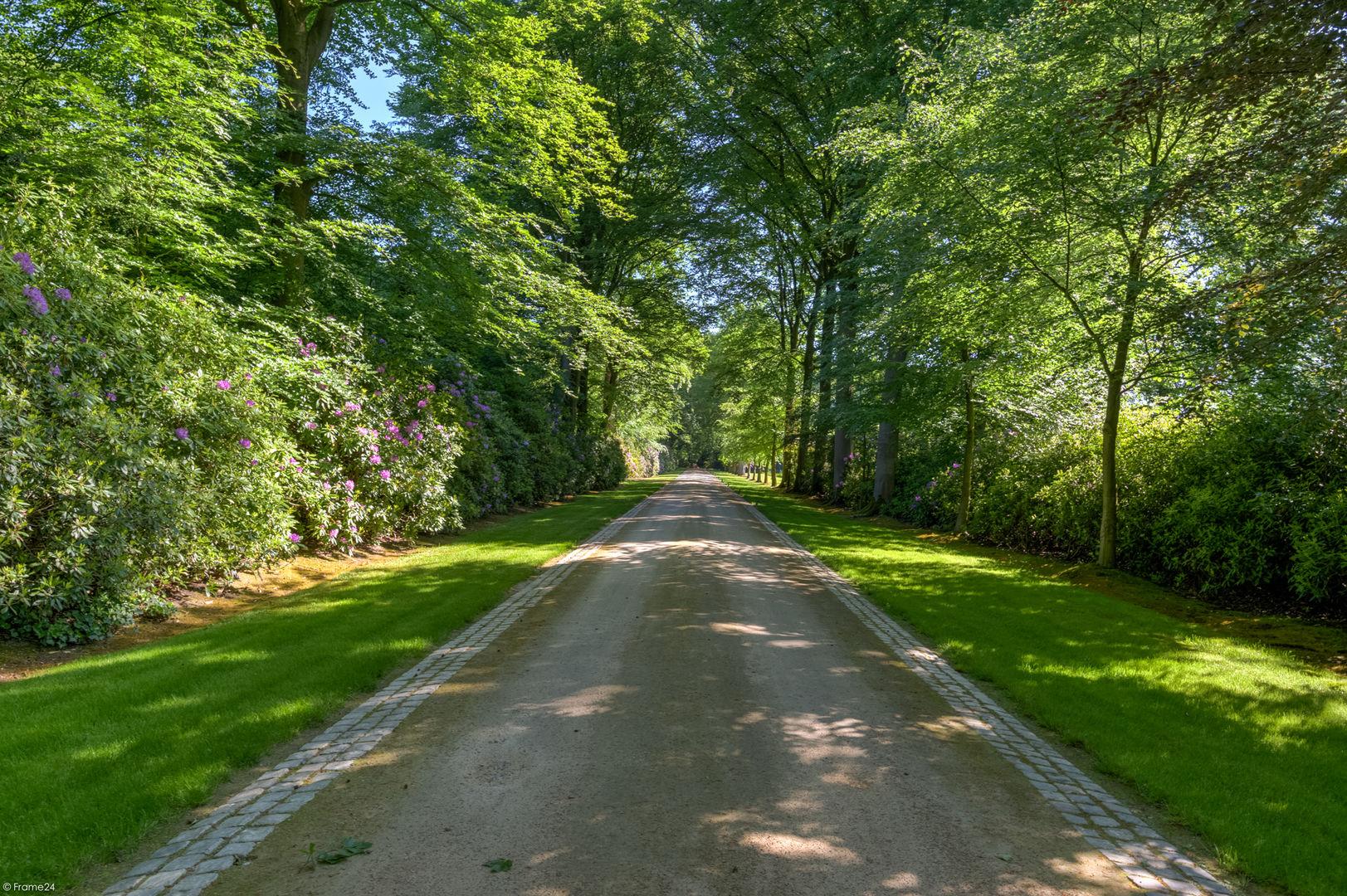 Acaciadreef, Schoten foto-