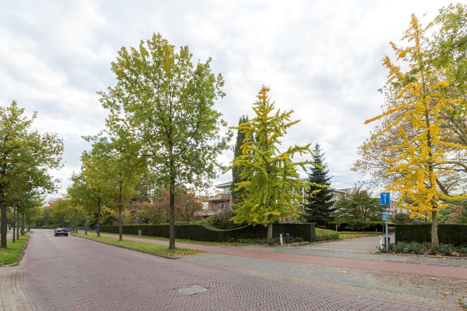 Groenenborgh 5, Oisterwijk foto-
