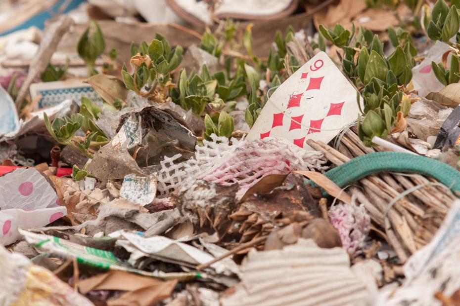 Card in  trash in Vegas David Constable