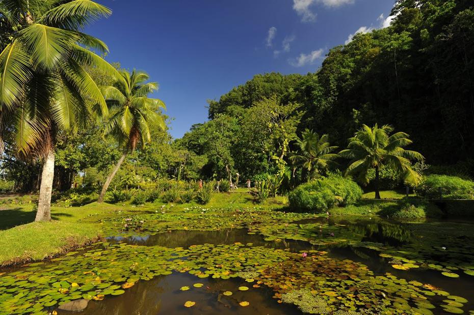 Vaipahi_Tahiti_GIE_TAHITI_TOURISME_Ty_Sawyer