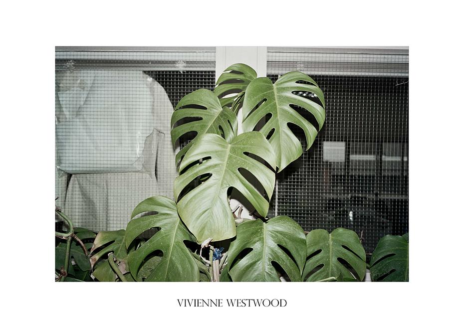 PLANTS_POLLYBROWN_PORT_VIVIENNEW