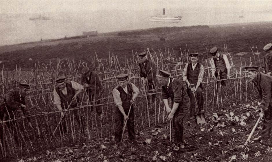 2013-009-1-Sailors-Allotment--WWI-1917