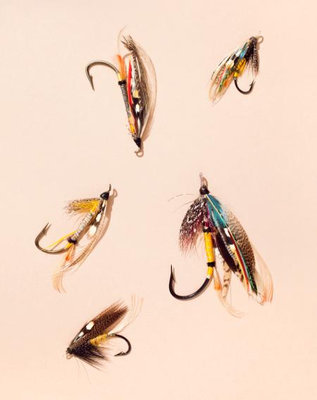Flies together