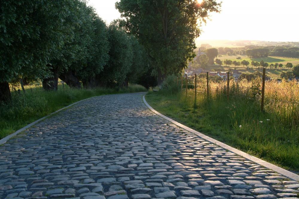 Revive Saffrou tuinappartement te koop in Oudenaarde met grote tuin
