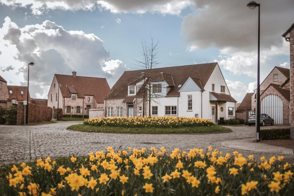 Voorjaarsbebloeming in woonwijk lores
