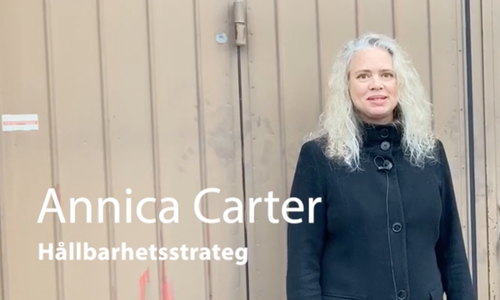 Annica Carter
