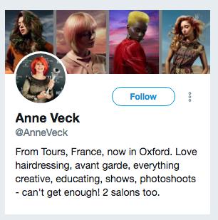 anne veck twitter bio