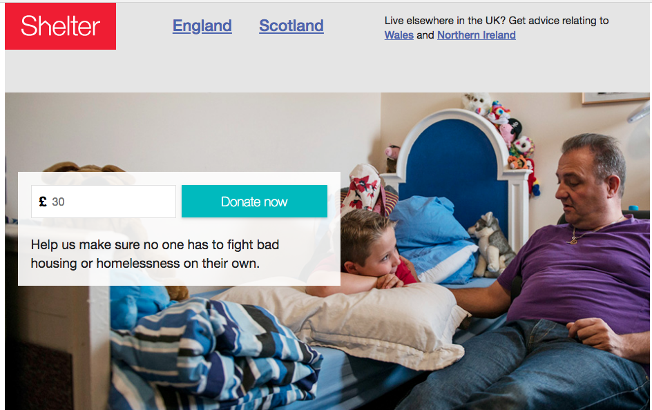 shelter charity website