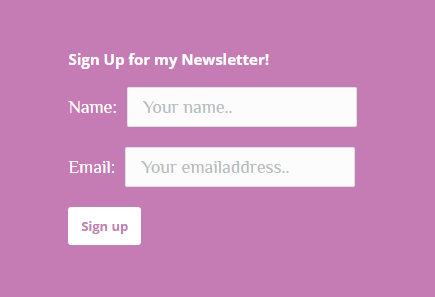 email form for salon