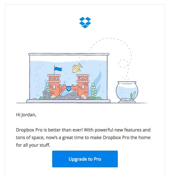 dropbox pro email marketing