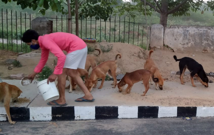 Kitchen for Paws: Delhi NCR