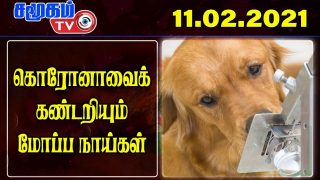 India Army Border News In Tamil- 11.02.2021 | India Defence news Tamil