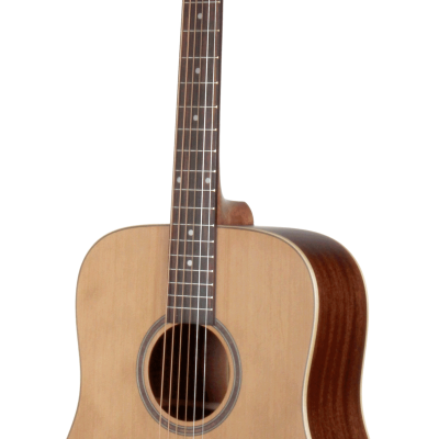 STS105NT Cedar and Mahogany Dreadnought Teton Guitar
