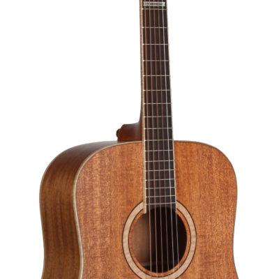 STS203NT 5th Anniversary Teton Guitar