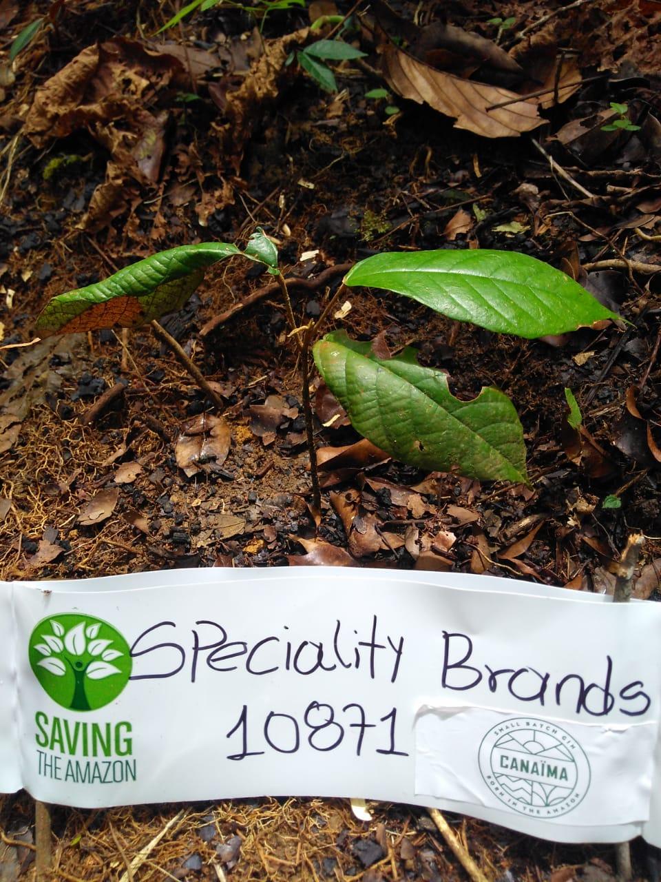 Speciality Brands