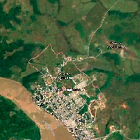 Bosque de Puerto Leguízamo