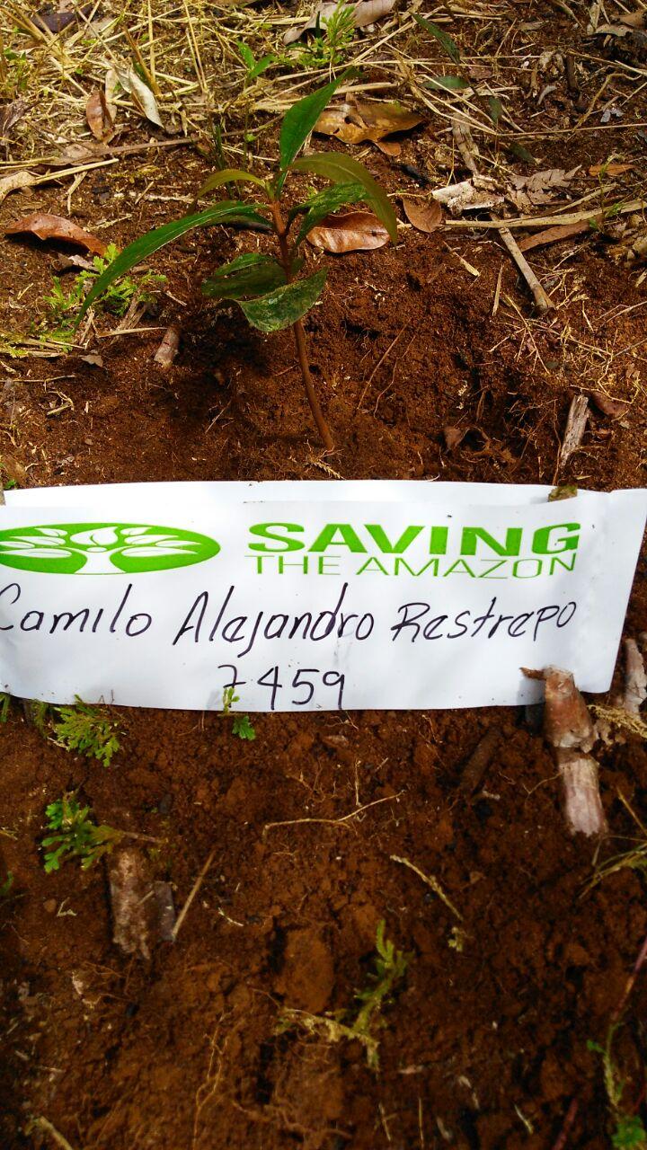 Camilo Alejandro Restrepo