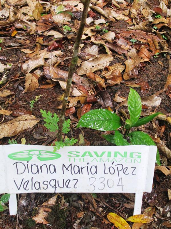 Diana María López Velásquez