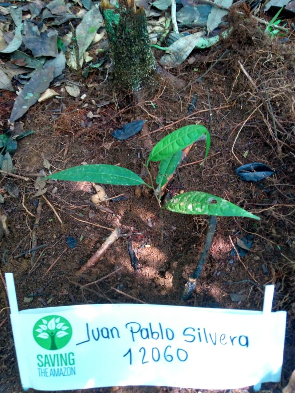 Juan Pablo Silvera