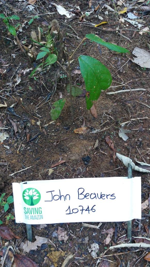 John Beavers