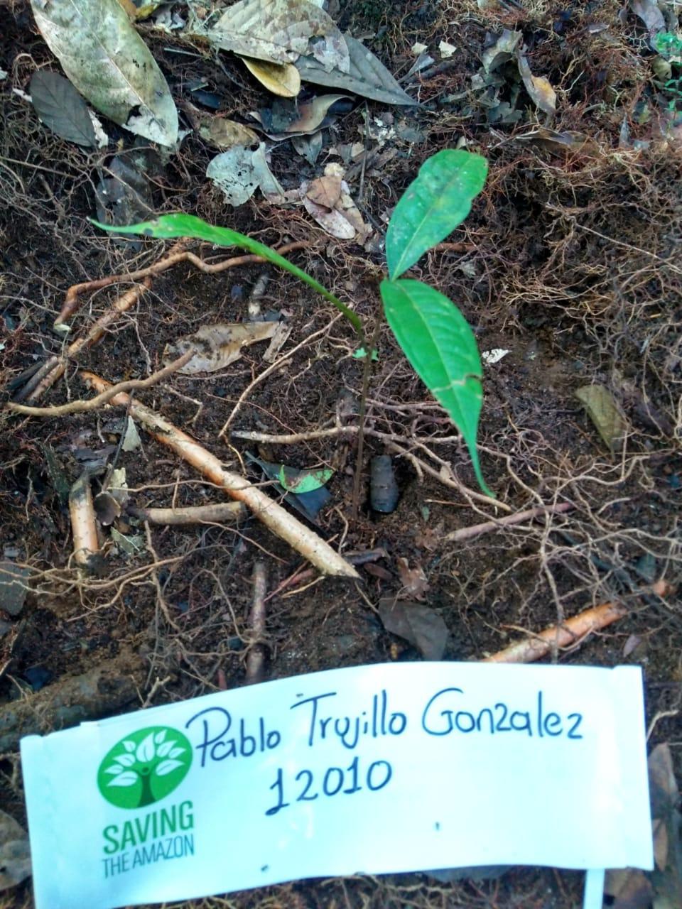 Pablo Trujillo Gonzalez