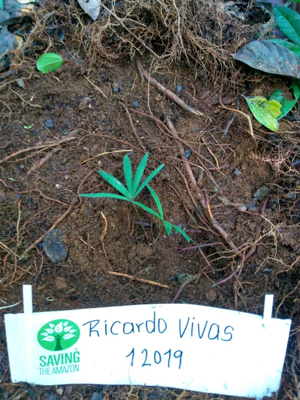 Ricardo Vivas